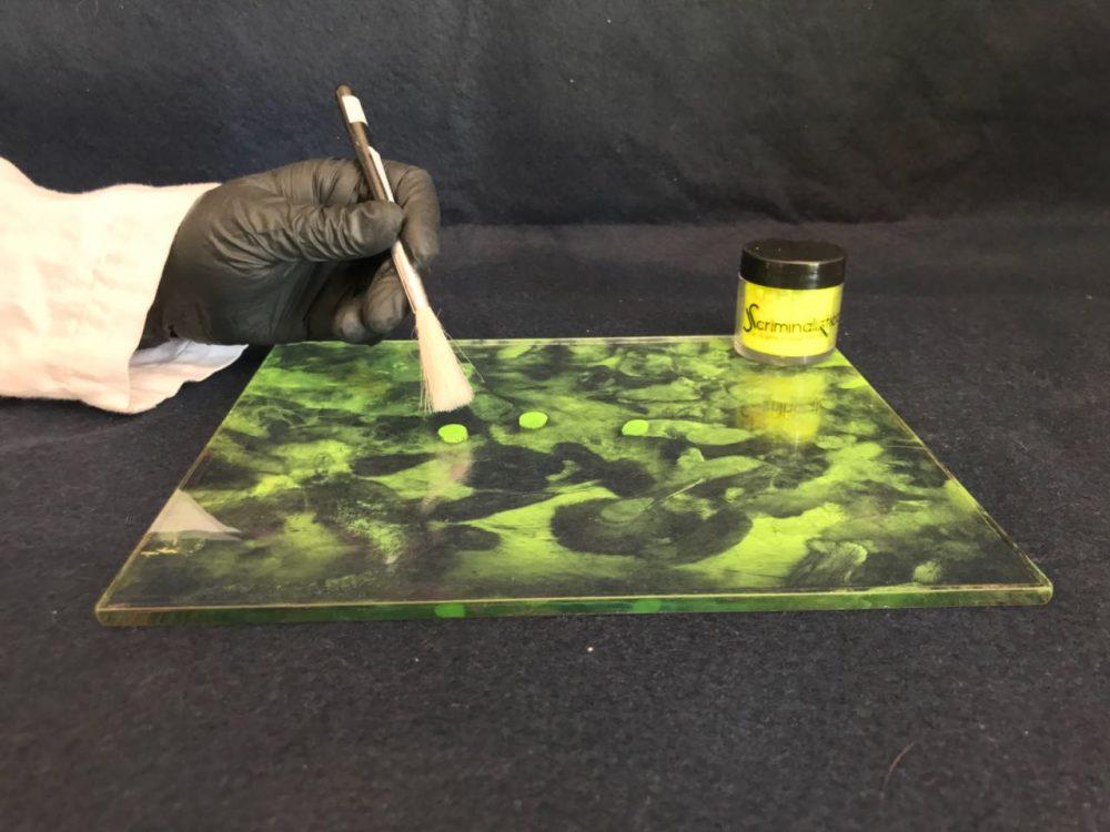Aplicador de pelo de camello 2